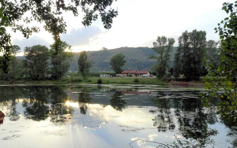 The pond at Andance campsite