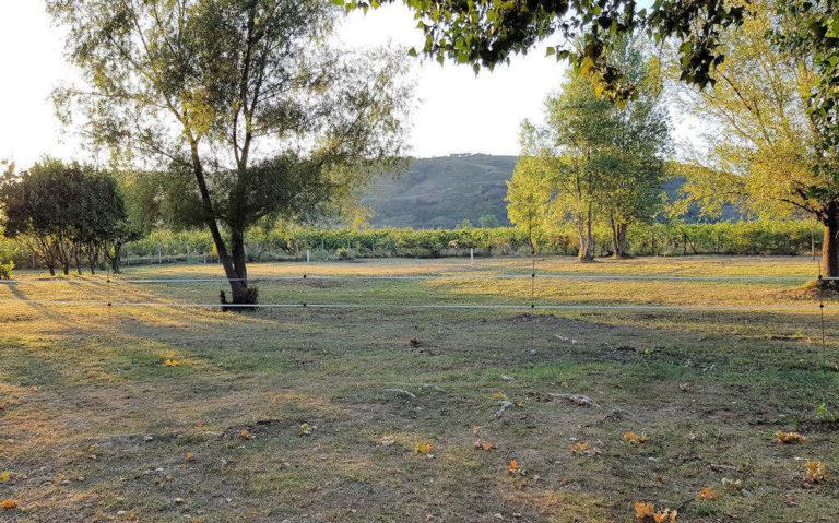 Location d'emplacements camping cariste en Ardèche Verte