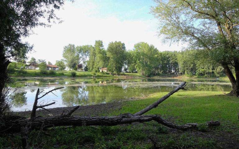 L'étang du camping d'Andance